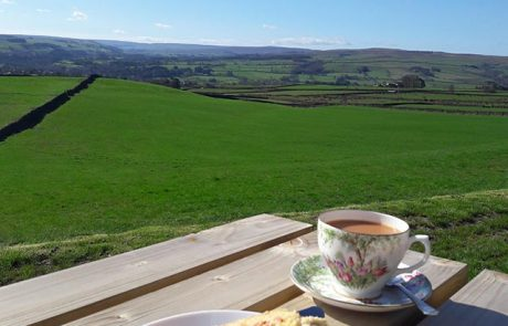 Teh beautiful view of Northumberland from Jill's cafe in Catton