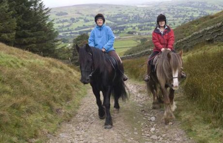 Pony trekking at Sinderhope